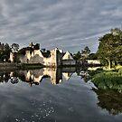 Adare Castle  by Martina Fagan