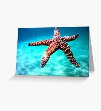 Starfish Greeting Card