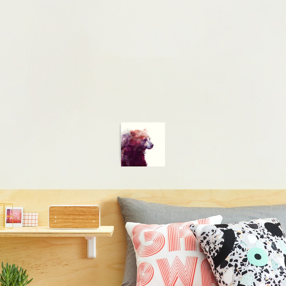 Bear // Calm - Square Format Photographic Print