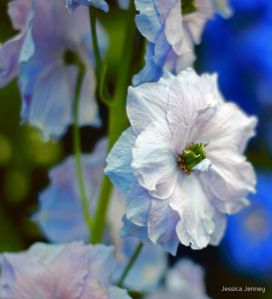 The Blues by Jessica Jenney