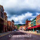 Deadwood by Luann wilslef