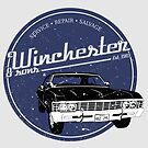 Winchester & sons by mostly10