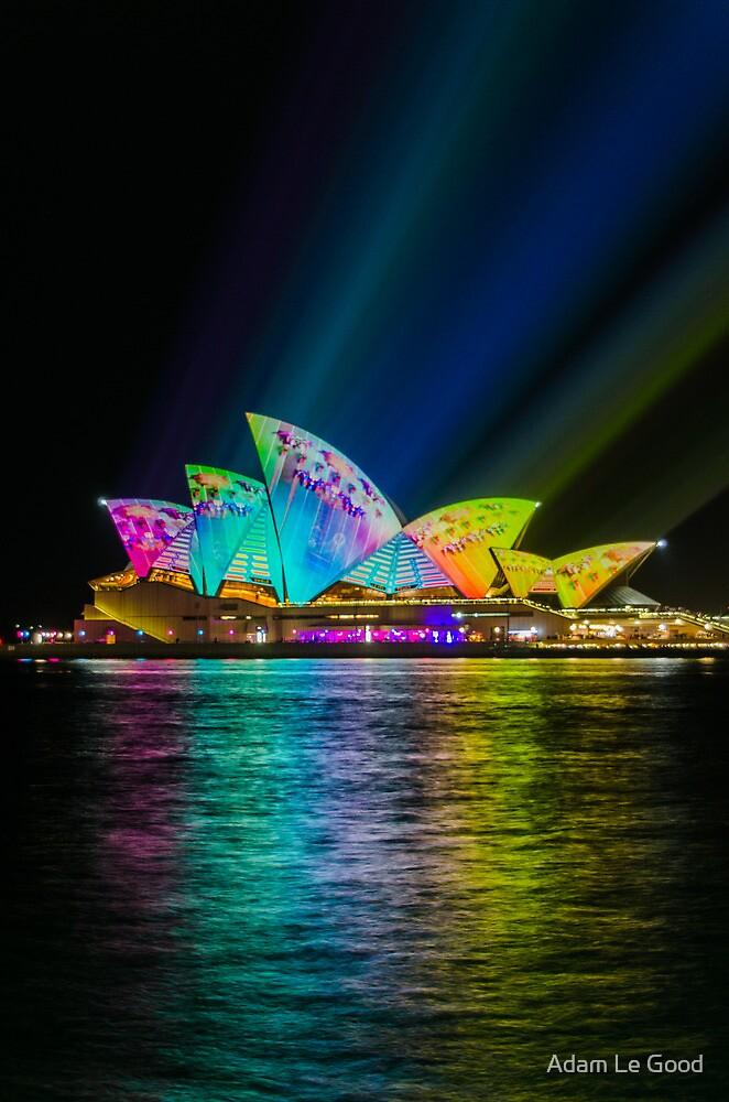 Sydney's Vivid Festival 2014: II by Adam Le Good