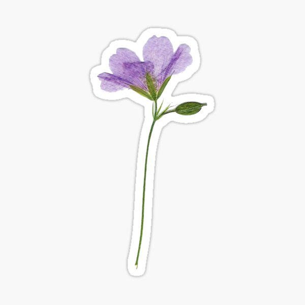 Lilac Flower Sticker