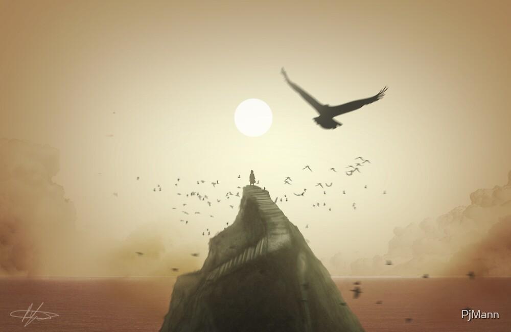 Fly On by PjMann