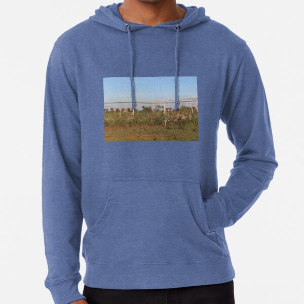 The Vase and Flower Pots Collection Lightweight Hoodie