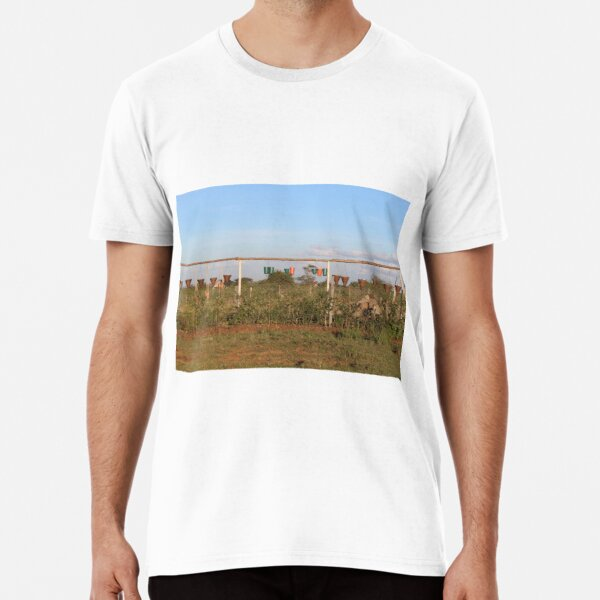 The Vase and Flower Pots Collection Premium T-Shirt