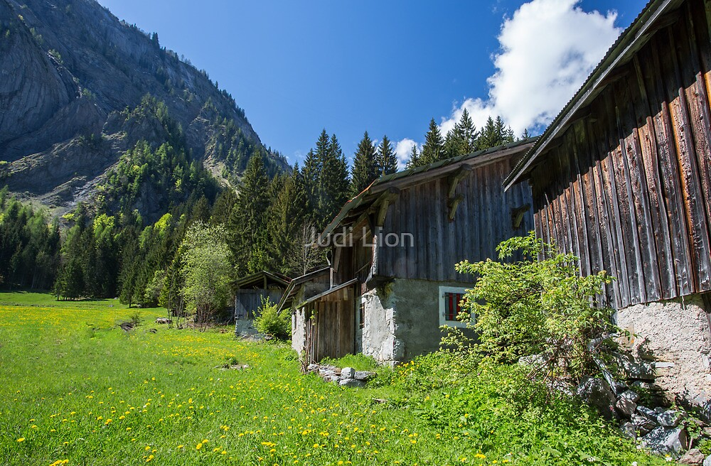 Chalets in a spring meadow by Judi Lion