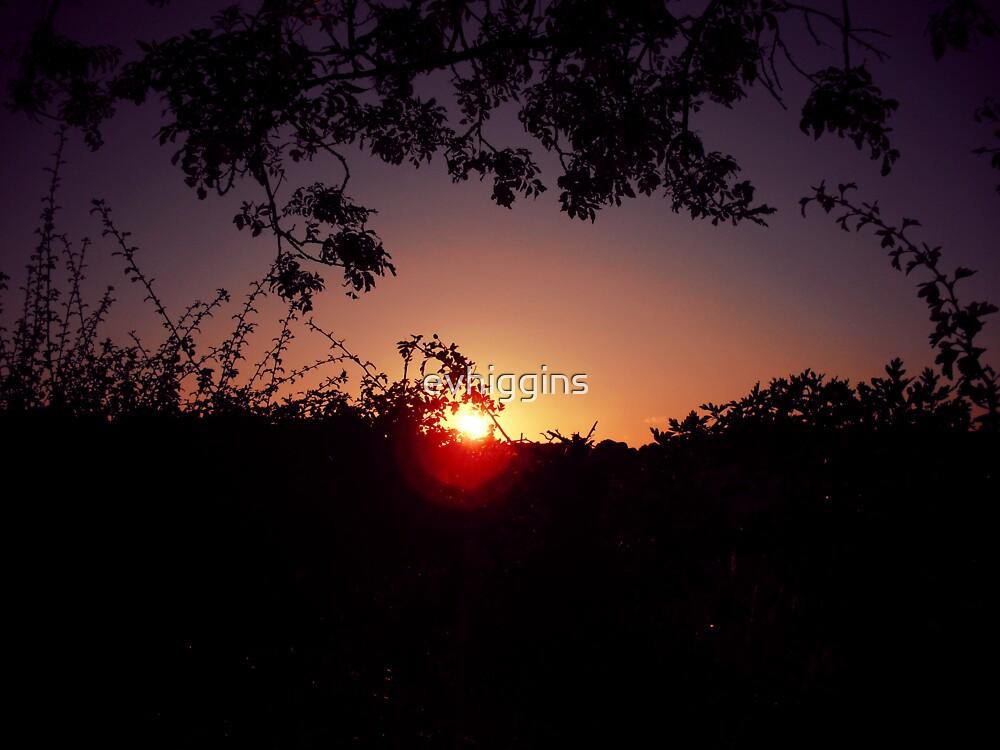 Summer Sunset by evhiggins