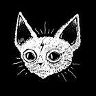 Kittens  by lOll3