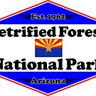 PETRIFIED FOREST NATIONAL PARK ARIZONA MOUNTAINS HIKING CAMPING HIKE CAMP 1962 by MyHandmadeSigns