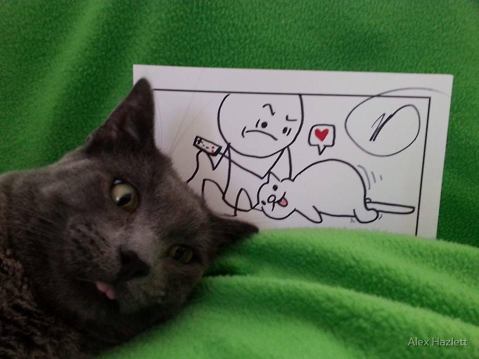 mentally retarded cat, Support it with C&H by Alex Hazlett