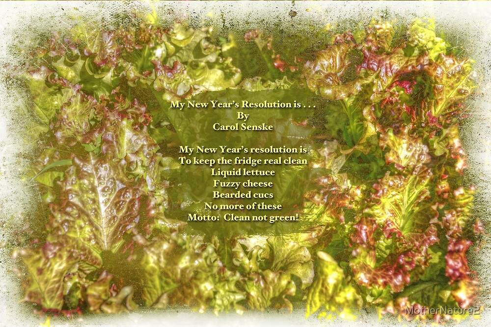 My New Year's Resolution Is . . . Poem And Image by MotherNature2