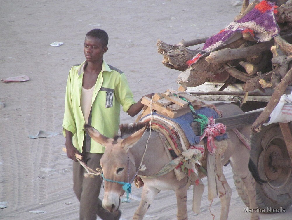 Donkey cart, Somaliland by Martina Nicolls