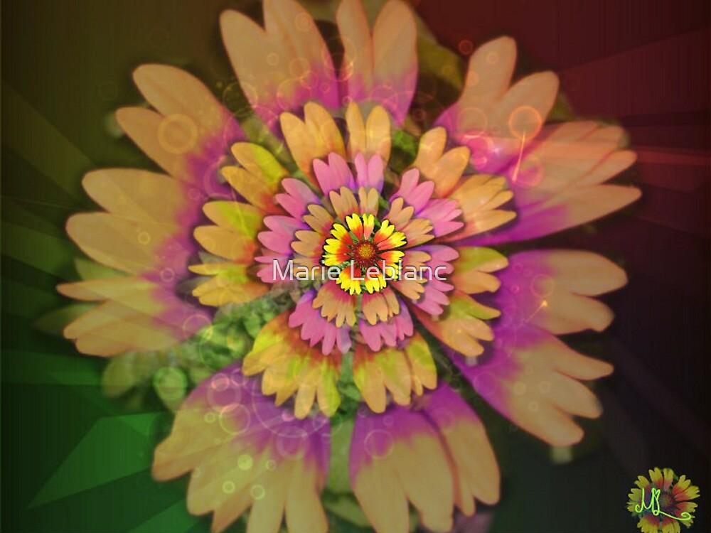 FLOWERS by Marie Leblanc