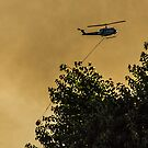 Firefighters in the Sky by Richard Bozarth