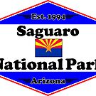 SAGUARO NATIONAL PARK ARIZONA MOUNTAINS HIKING CAMPING HIKE CAMP 1994 by MyHandmadeSigns