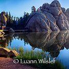 Sylvan Lake  by Luann wilslef
