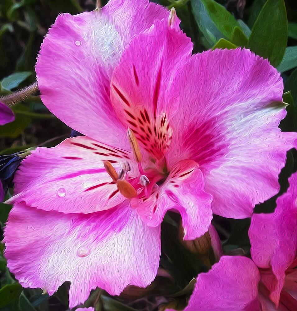 Pretty In Pink by susangabrielart