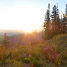 Sunset at Cedar Breaks No. 1 by halabilly