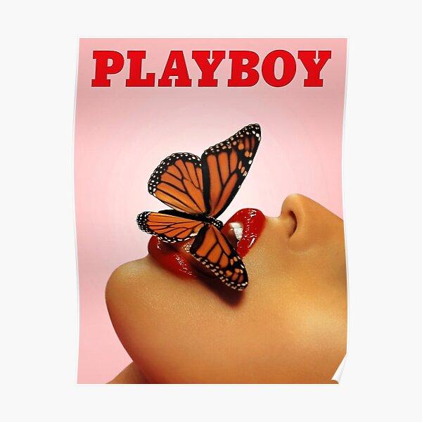 Vintage Schmetterling Poster