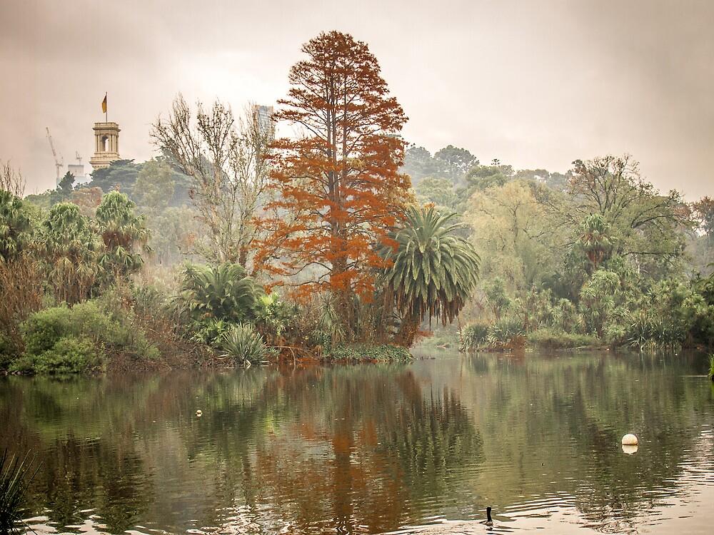 Botanical Gardens, Melbourne - 2 by PrimrosePress