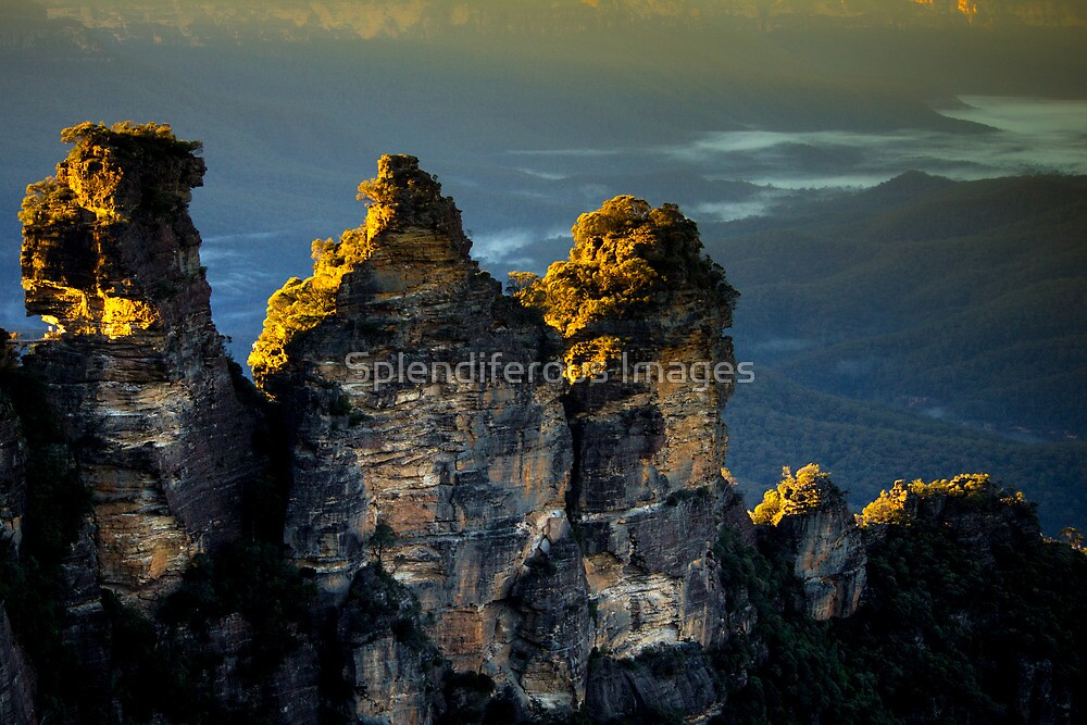 The Three Sisters at Sunrise - Blue Mountains, Australia by Splendiferous Images