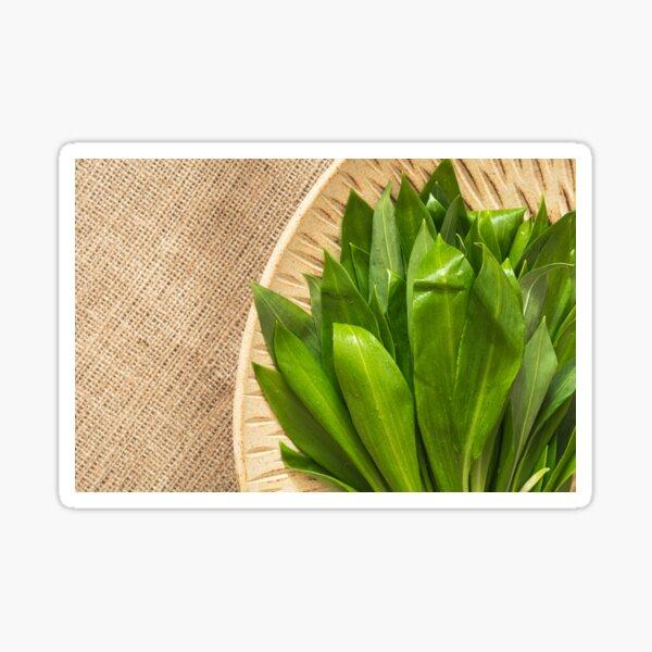 Wild garlic Sticker