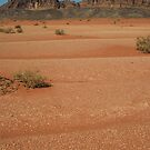 In the deserts of Jordan by KerryPurnell