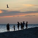 Sunset with Friends by Anthony Wilson