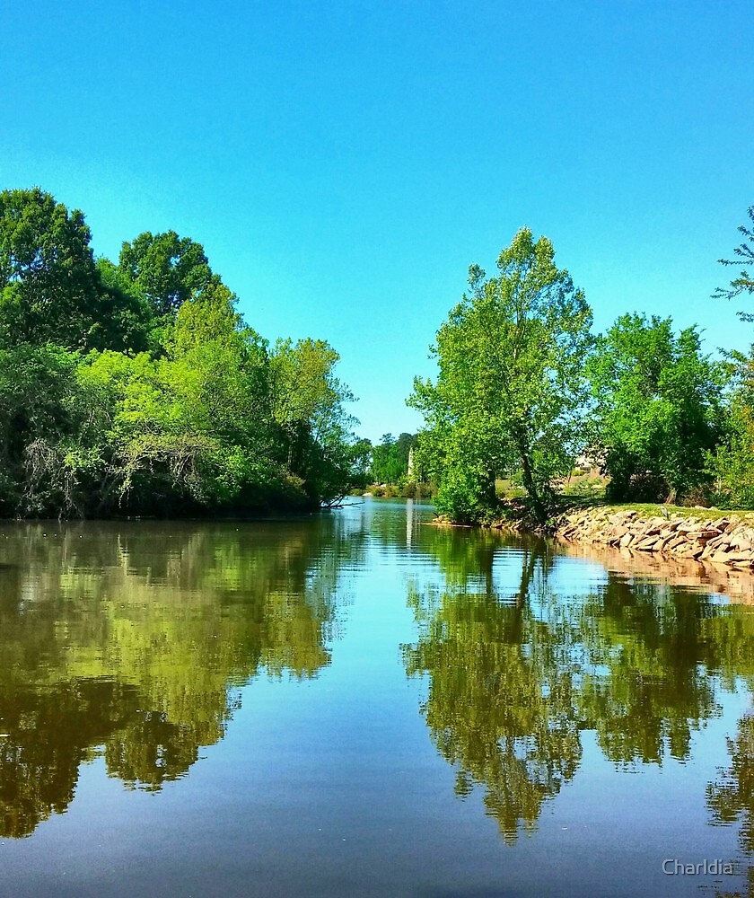Beauty of Reflecting Nature by Charldia