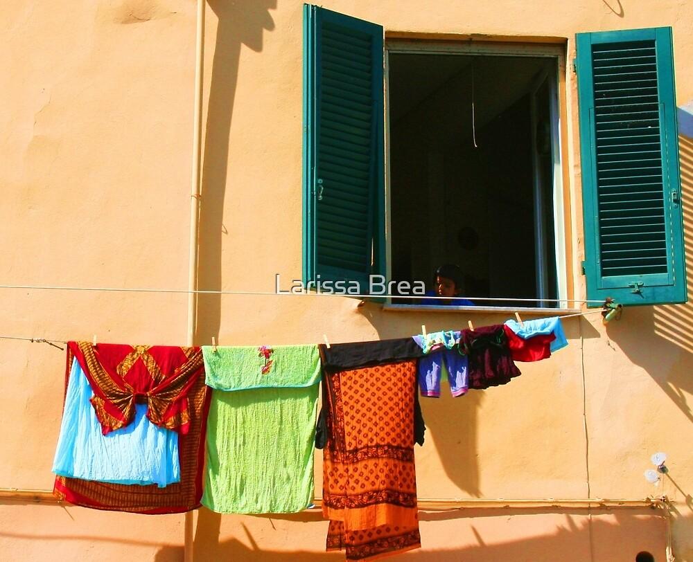 Italian Window by Larissa Brea