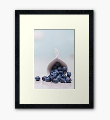still life ~ blueberries Framed Print