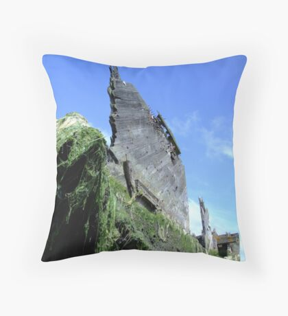 The Sailing Trader Throw Pillow