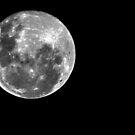 Full Moon by Splendiferous Images