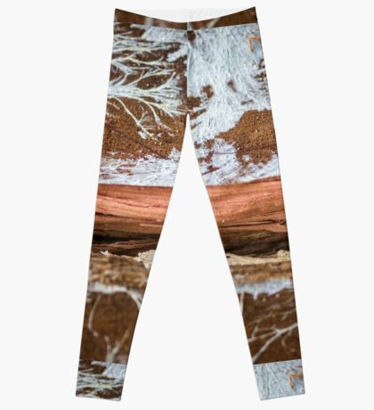 The wood draws trees - Reflecting the Nature it was Leggings