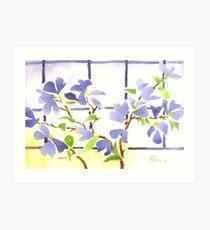 Dogwood in the Window Art Print