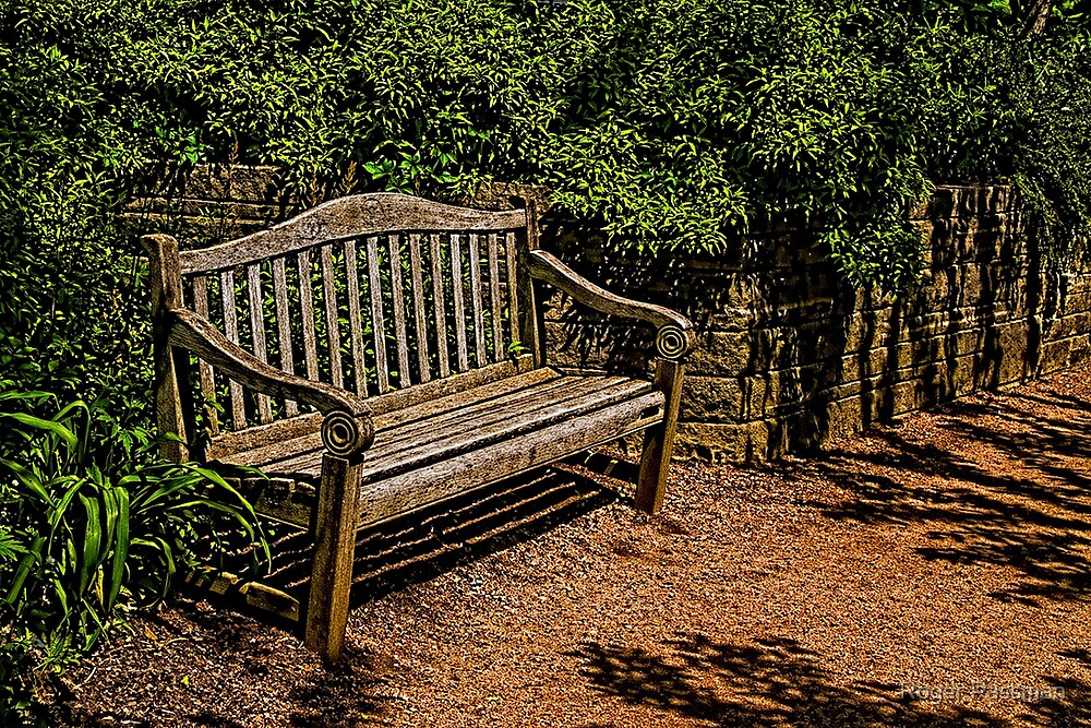 Bench in the Gardens by Roger Passman