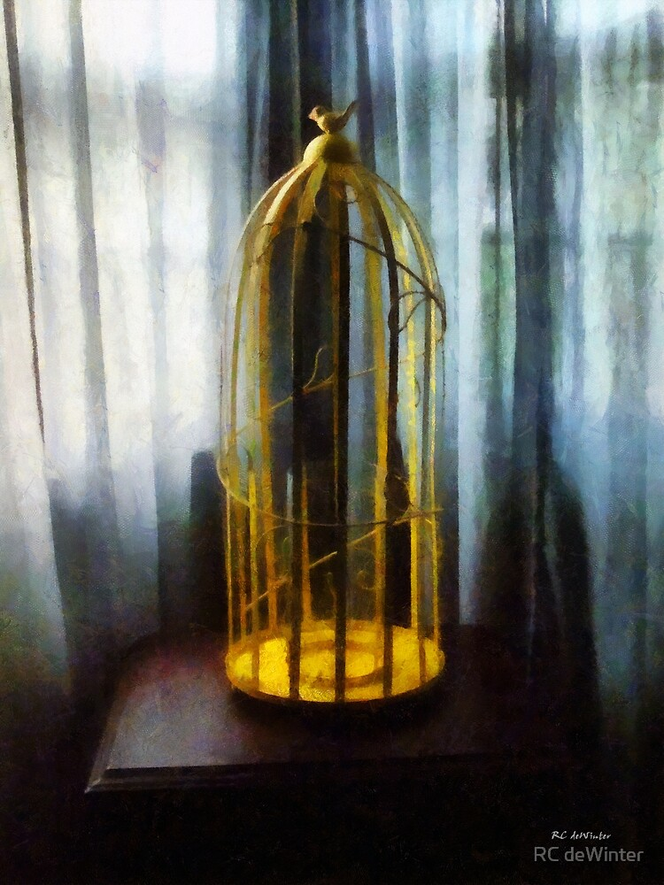 Gilded Cage by RC deWinter