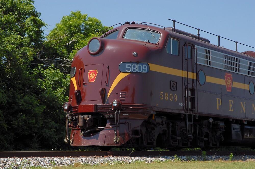 Pennsylvania Railroad Unit No. 5809 by Steve Mezardjian