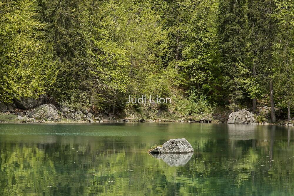The Green Lake by Judi Lion