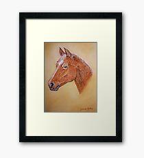 Pferd Gerahmtes Wandbild