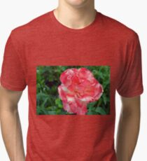 Macro on beautiful pink flower in the garden. Tri-blend T-Shirt
