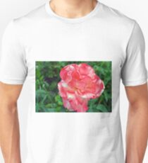 Macro on beautiful pink flower in the garden. T-Shirt