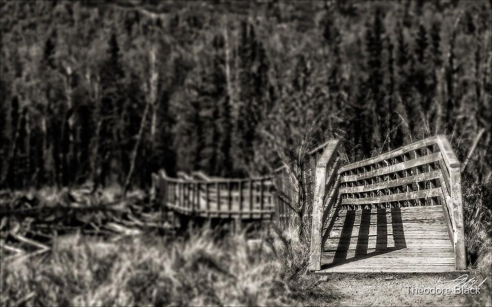 Bridge by Theodore Black