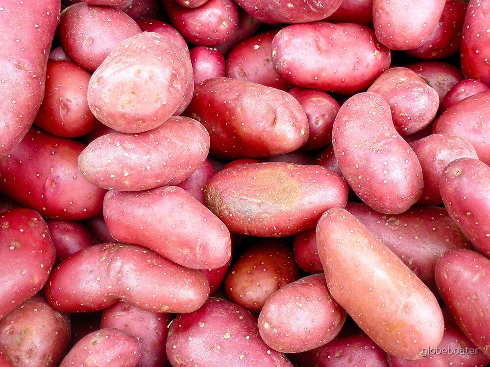 Red Potatoes by globeboater