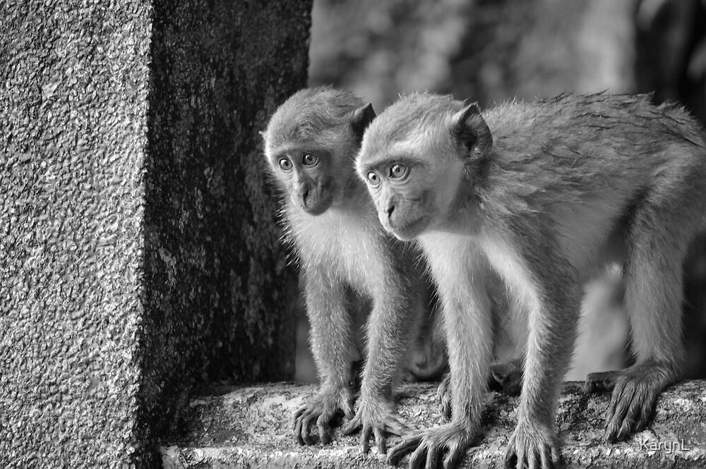 Monkey dua! by KarynL