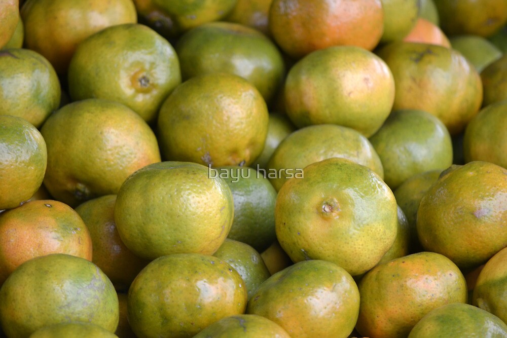bunch of orange by bayu harsa