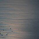 Setting Sun by Maartje de Nie