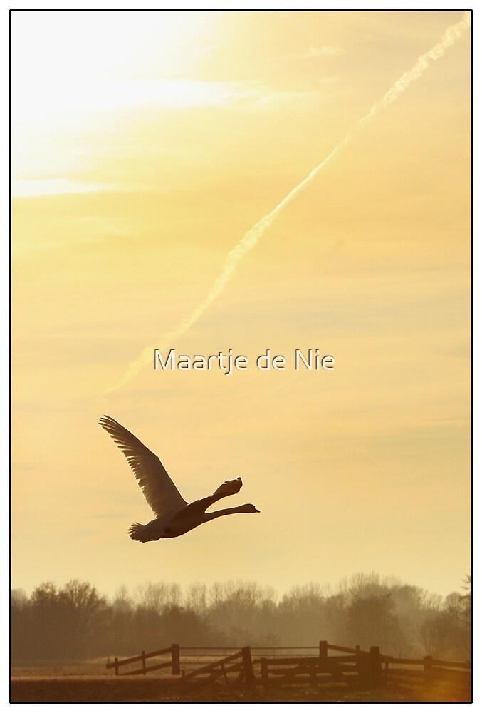 The Swan by Maartje de Nie